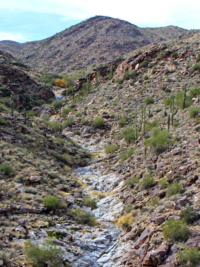 Ravine, White Tank, White Tank Mountains, Desert, Landscape, Mesquite Canyon Hiking Trail, Phoenix, Wadell, Arizona