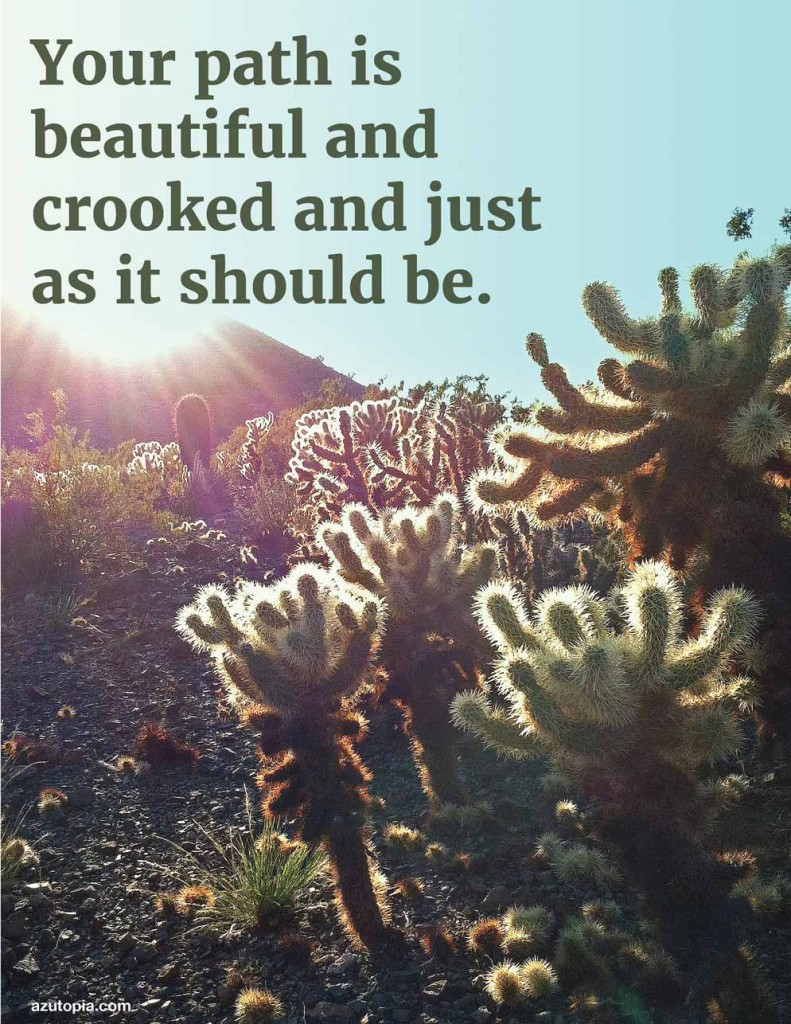 Inspiration, Poster, Landscape, Dessert, Cholla, Your Path is Beautiful