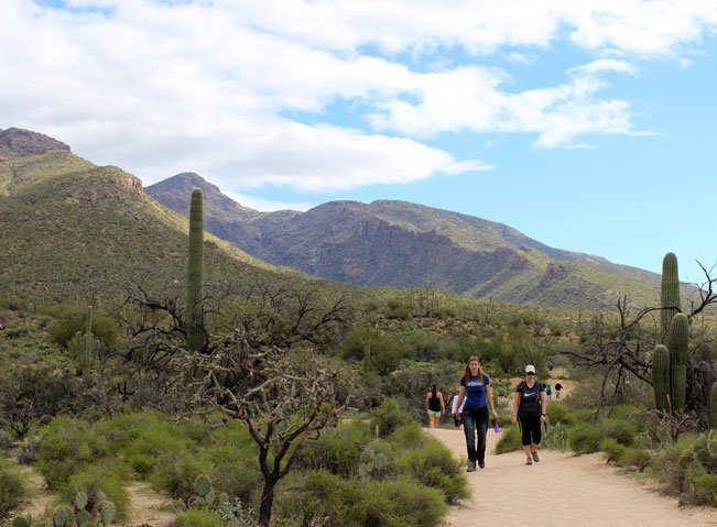 People, Trailhead, Hiking, Tucson, Sabino Canyon, Bear Canyon Trail, Arizona