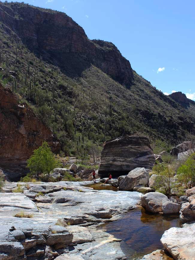 Tucson, Arizona, Sabino Canyon, Sabino Creek, Bear Canyon Hiking Trail, Hike