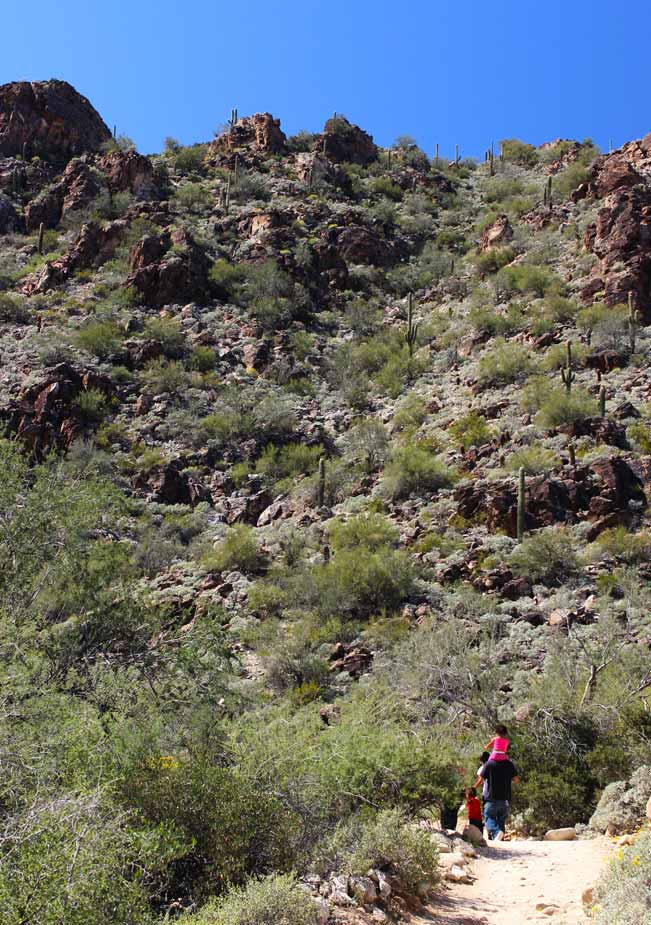 Family, Hiking, Hiking Waterfall Trail, Central Arizona, White Tank Mountains, Phoenix, Wadell
