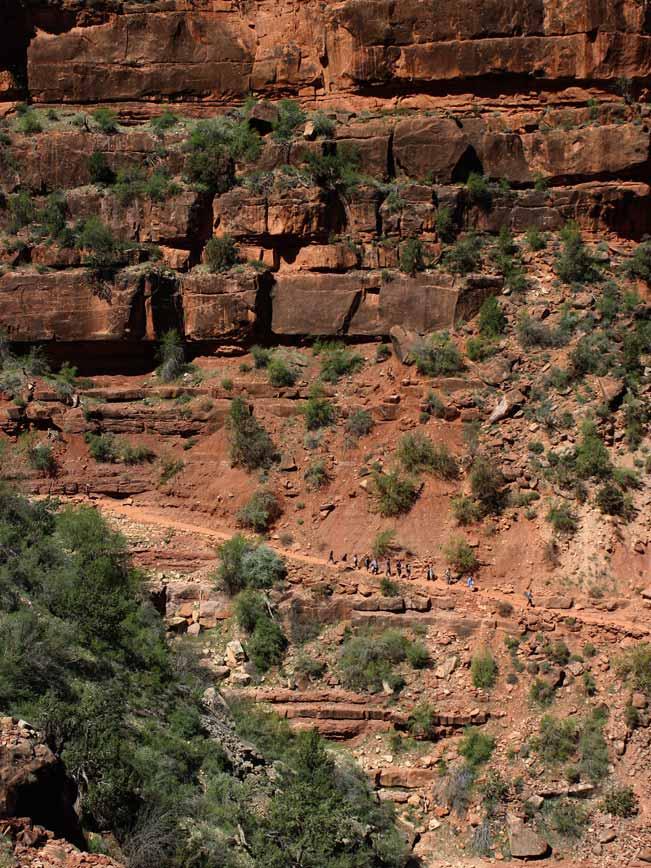 Hikers, Arizona, Grand Canyon, Bright Angel Hiking Trail, Cliff.