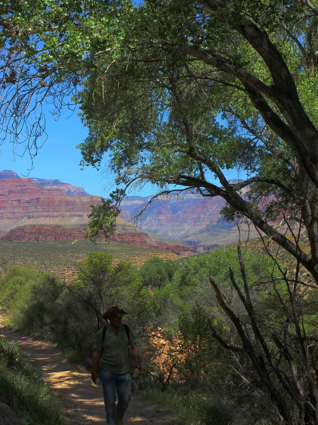 Trailhead, Arizona, Grand Canyon, Plateau Point Hiking Trail, Shade, Trees, Indian Garden.