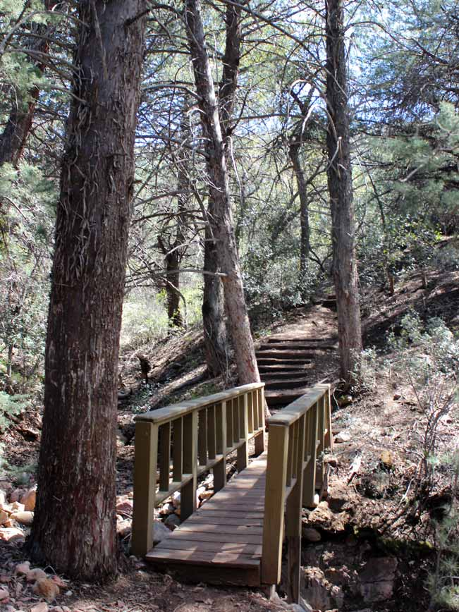 Pine Creek Hiking Trail, Wooden Walkway, Pines, Tonto Bridge National Park, Payson, Arizona