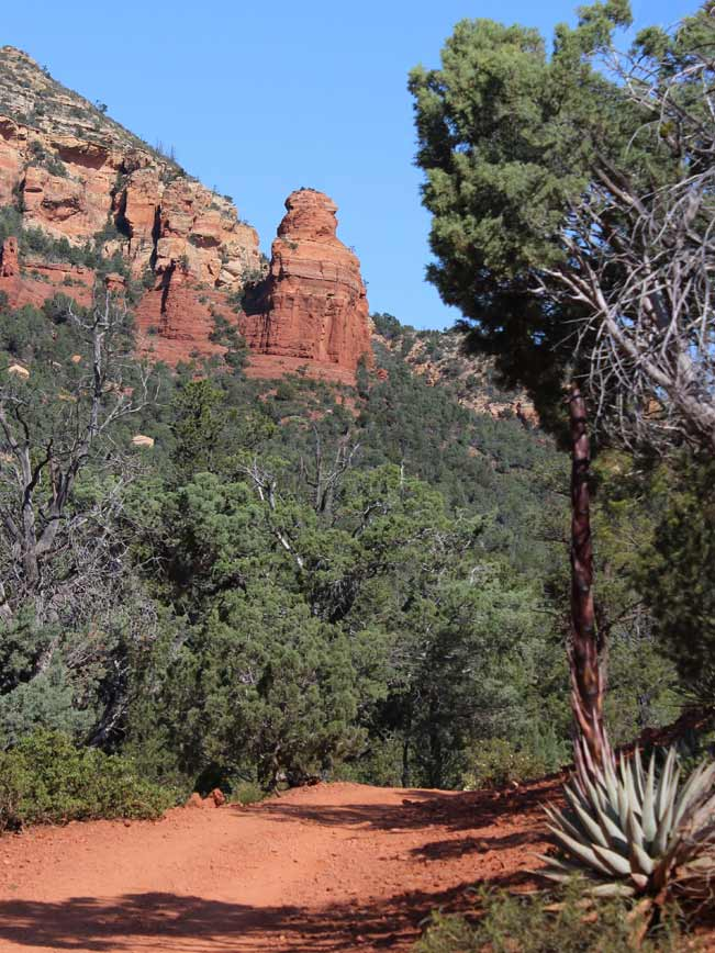 Landscape, View, Sedona, Arizona, Brins Mesa Hiking Trail, Pines, Canyons