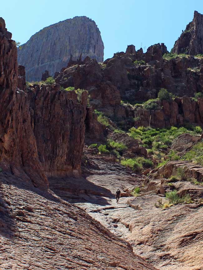 Landscape, Hiker, Central Arizona, Greater Phoenix Area, Superstition Mountain, Lost Dutchman State Park, Siphon Draw Hiking Trail, Flatiron Mesa