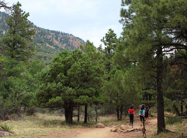 Hikers, Flagstaff, Arizona, Fatmans Loop Hiking Trail, Canyons, Elden Mountain