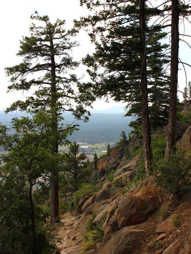 Landscape, Flagstaff, Arizona, Elden Lookout Hiking Trail, Elden Mouontain, Ponderosa Pines, Mountain Views