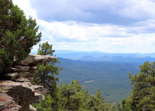 Landscape, View, Arizona Plateau, Rim Lakes Trail, Payson, Arizona, Mogollon Rim, Rim Lakes Vista Hiking Trail