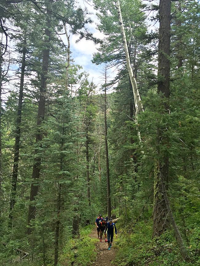 Landscape,Hikers, Bill Williams Hiking Trail, Pines, Williams, Arizona