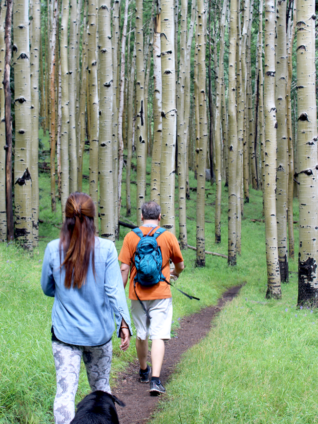 Hikers, Dog, Flagstaff, Arizona, Inner Basin Hiking Trail, Aspens