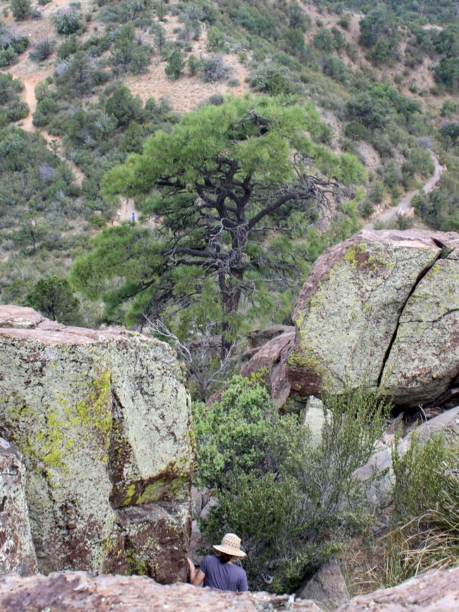Lanscape, Hiker, Rocky, Pinnacle, Prescott, Arizona, Thumb Butte, Thumb Butte Loop Hiking Trail