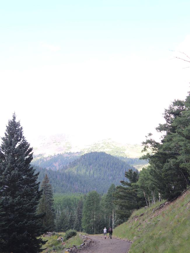Hikers, Dog, Pipeline Road, Inner Basin Hiking Trail, Flagstaff, Arizona, San Francisco Mountains