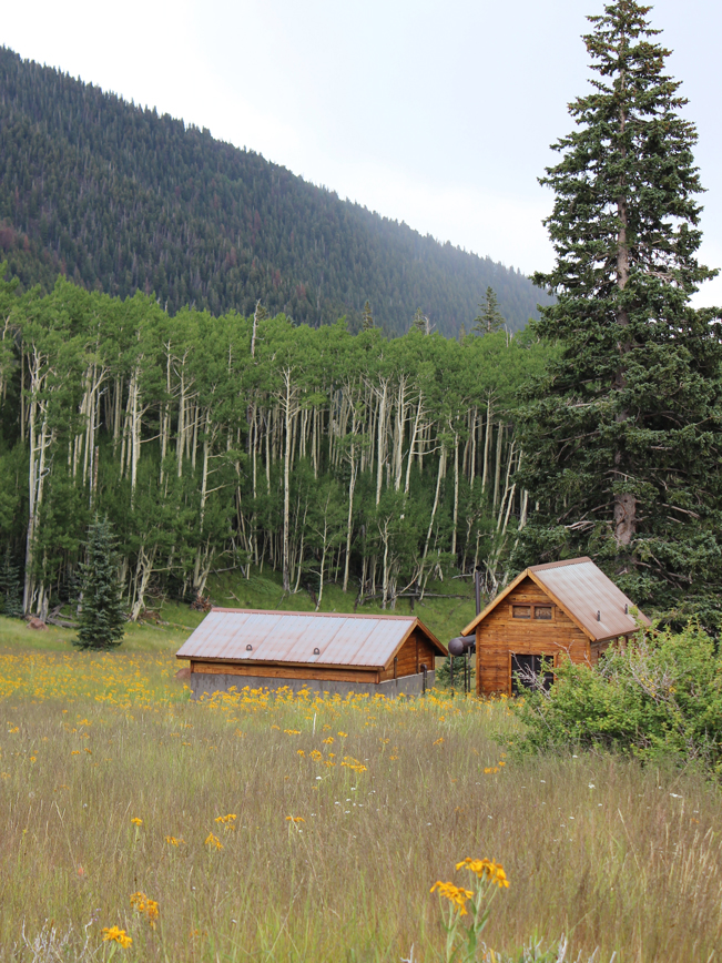 Landscape, View, Well Shelter, Meadow, Flagstaff, Arizona, Inner Basin Hiking Trail, Aspens, Mountains