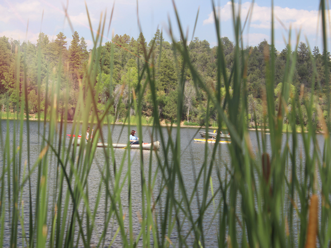 People, Paddling, Kayaks, Cattails, Reeds, Prescott, Arizona, Lynx Lake, Lynx Lake Recreation Hiking Trail