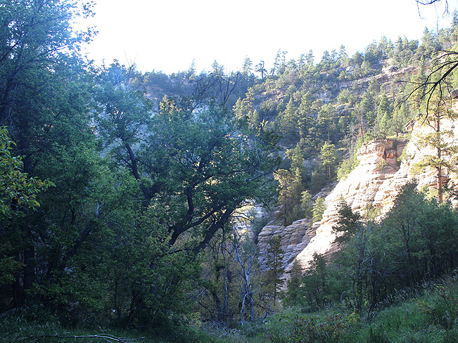 Landscape, View, Cliffs, Trees, Flagstaff, Arizona, Walnut Canyon., Arizona Trail, Sandys Canyon Hiking Trail