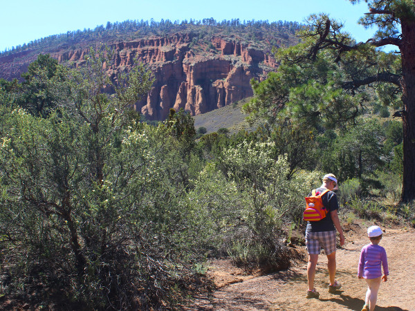 Landscape, Family, Hikers, Flagstaff, Arizona, Red Mountain Hiking Trail, Red Rock Mountain