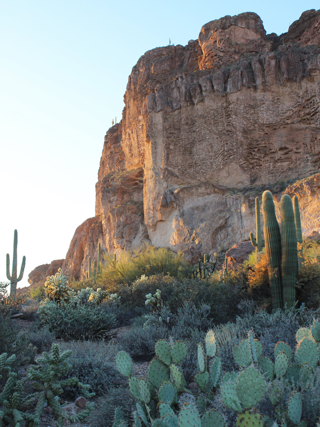 Cliffs, Saguaros, Prickly Pear, Cacti, Peralta Hiking Trail, Superstition Mountains, Central Arizona,Phoenix.