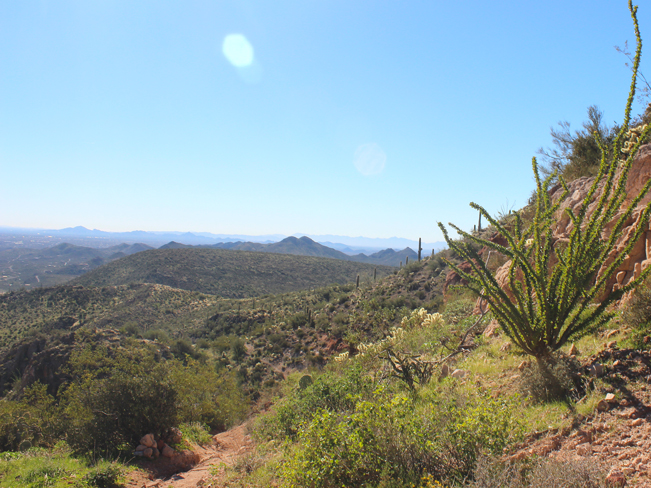 Landscape, View, Phoenix, Mountains, Cave Creek, Arizona, Elephant Mountain Hiking Trail Loop, Spur Cross Conservation Area