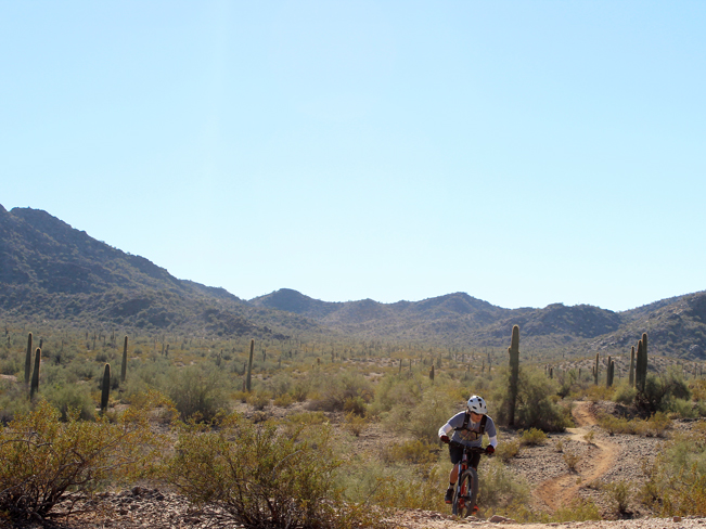 Landscape, View, Mountain Biker,Goodyear, Arizona, Estrella Mountain Regional Park, Rainbow Valley and Toothaker Hiking Trail Loop, Phoenix, Mountains
