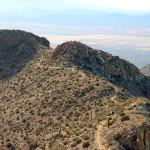 Landscape, View, King Canyon Hiking Trail, Tucson, Arizona, Hikers, Ridgeline, Peak, Saguaro National Park, Tucson Mountains, Wasson Peak, Tucson Area, Tucson AZ Hiking Trails