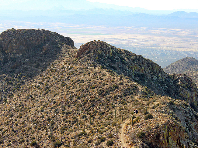 Landscape, View, King Canyon Hiking Trail, Tucson, Arizona, Hikers, Ridgeline, Peak, Saguaro National Park