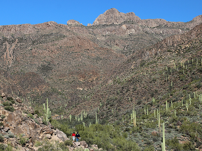 Hikers, Hieroglyphics Hiking Trail, Gold Canyon, Phoenix, Arizona, Views, Canyons, Superstition Mountains