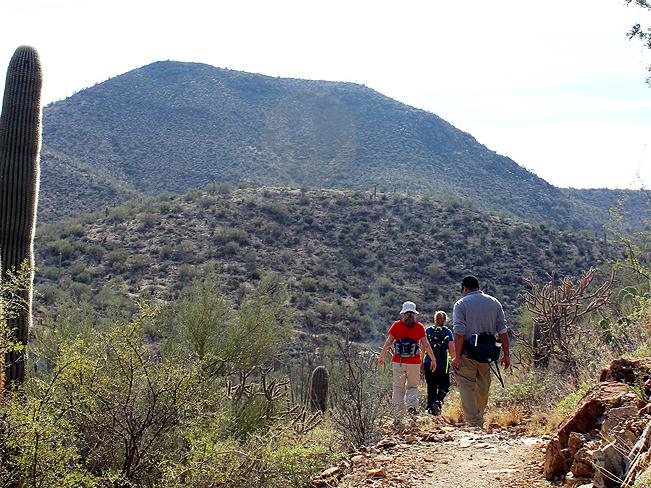 Landscape, Hikers, King Canyon Hiking Trail, Tucson Mountains, Foothills, Saguaro National Park, Tucson, Arizona