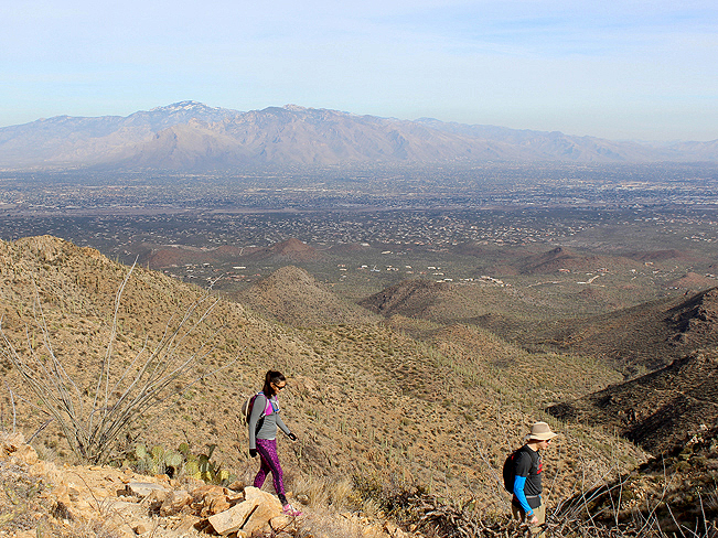 Landscape, View, Two Hikers, Foothills, Wasson Peak, King Canyon Hiking Trail, Tucson Mountains, Saguaro National Park, Tucson, Arizona