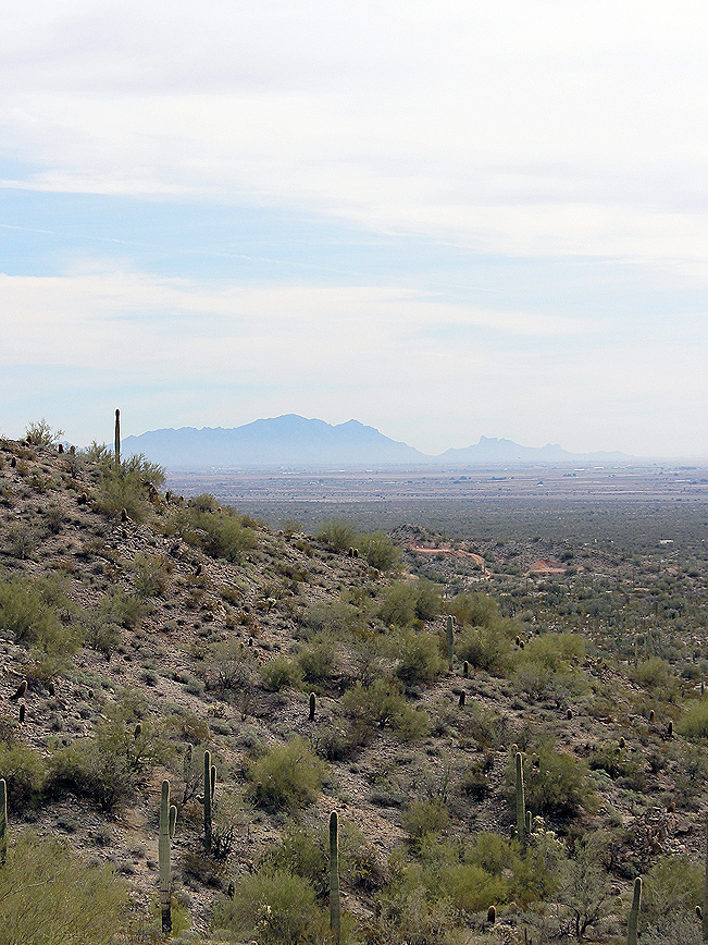 Landscape, View, Desert, Farmlands, Picacho Peak, San Tan Hiking Trail Loop, San Tan Regional Park, Queen Creek, Arizona, Phoenix Area