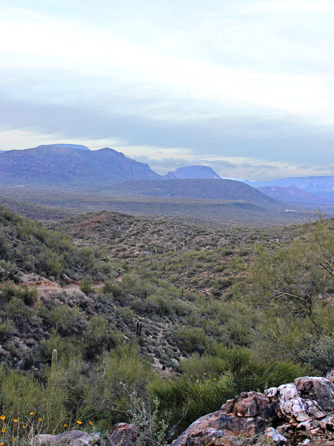 Landscape, Vista, Cave Creek, Arizona, Go John Hiking Trail, Cave Creek Regional Park, Hills, View, Elephant Mountain