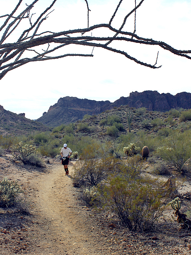 Landscape, View, Hiker, San Tan Hiking Trail, Queen Creek, San Tan Regional Park, Phoenix Area, Arizona, Phoenix Area, Malpais Mountains