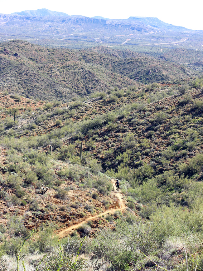 Landscape, View, Mountain Biker, Arizona, Bradshaw Mountains, Black Canyon Trail, Black Canyon City, Phoenix Area, Rock Springs Spur Trail