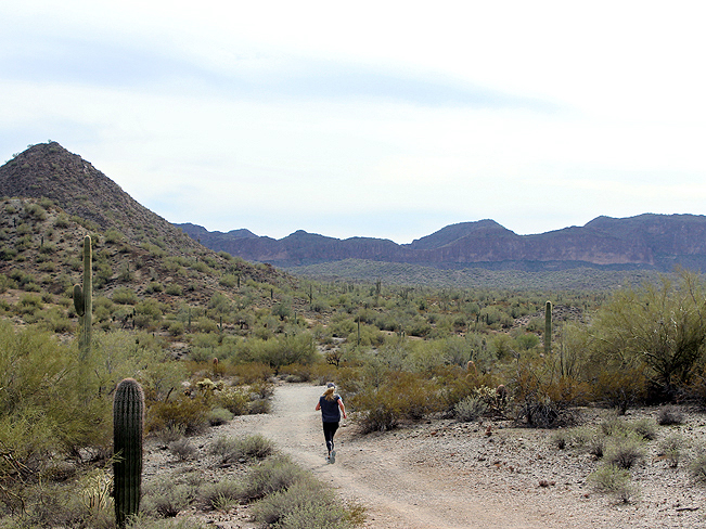 Landscape, View, Woman, Trail Runner, Malpais Mountains, San Tan Regional Park, Queen Creek, Arizona, San Tan Hiking Trail Loop, Phoenix Area
