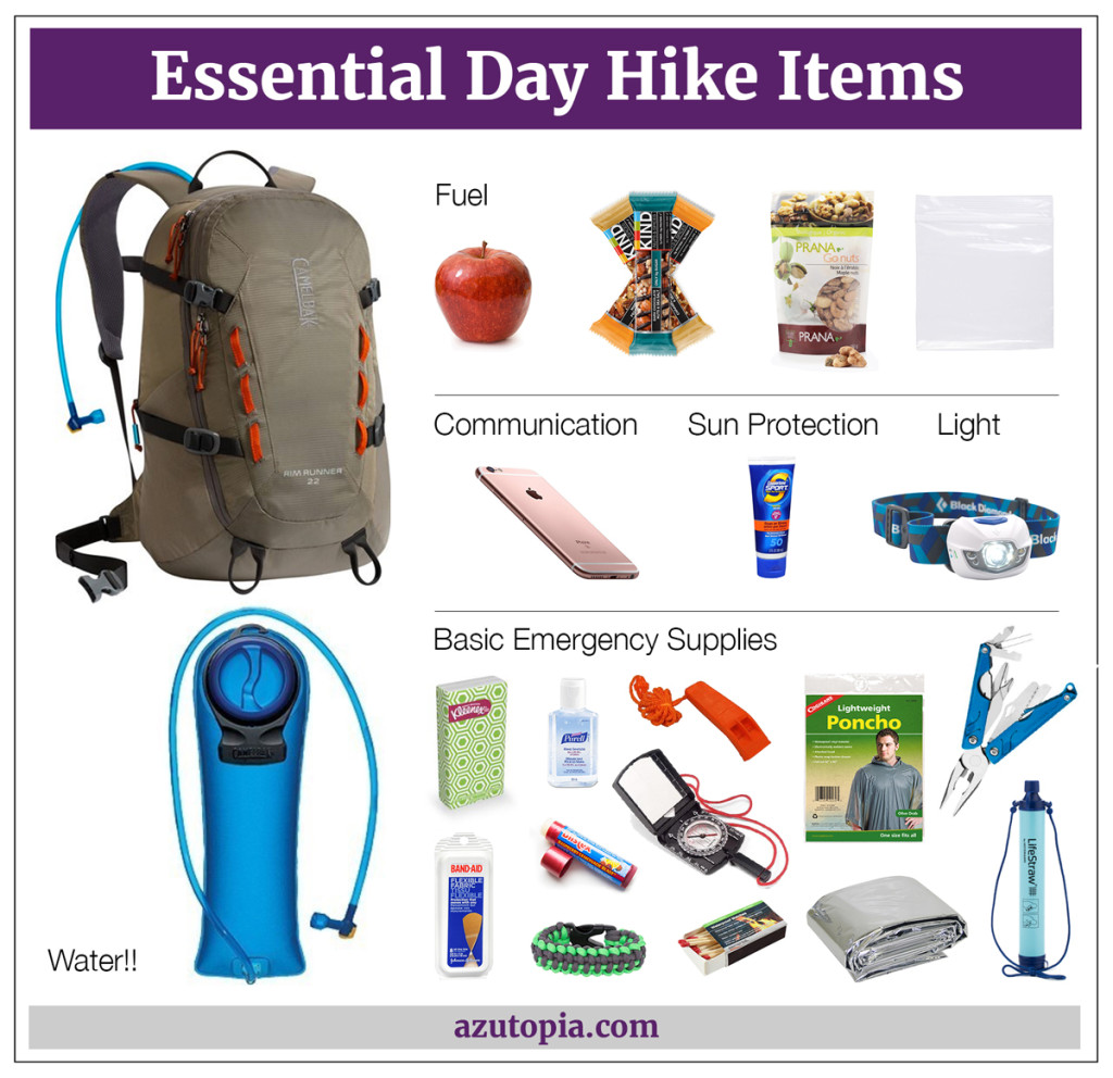 Essential_Day_Hike_Items_1200x1163, Chart, Day Hike Essentials, Hiking Foods, Hydration Pack, Cell Phone, Sun Screen, Headlamp, Basic Emergency Supplies. What to Take on a Hike