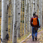Hikers, Backpack, Flagstaff, ARizona,, Inner Basin Hiking Trail, Aspens. AZ Utopia, What to Take on a HIke, Hiking Tips, Hiking in Arizona Tips