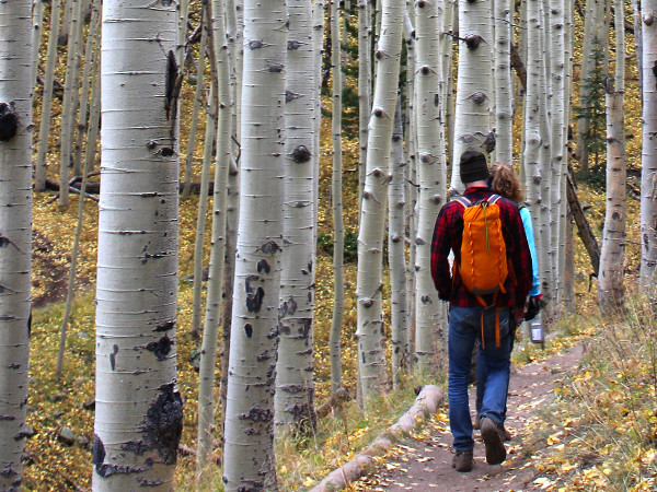 Hikers, Backpack, Flagstaff, ARizona,, Inner Basin Hiking Trail, Aspens. AZ Utopia, What to Take on a HIke