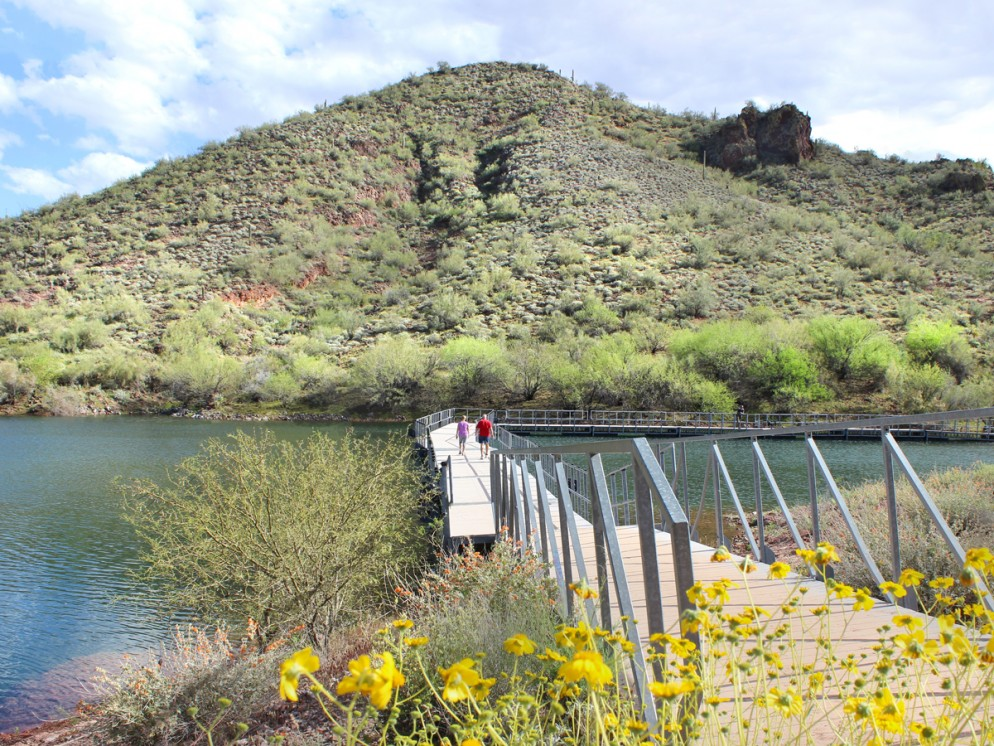 Landscape, View, Hikers, Floating Bridge, Pipeline Canyon Hiking Trail, Lake Pleasant, Phoenix Area, Phoenix, Arizona, Lake, Wildflowers, Family Hikes, Water Feature Hikes