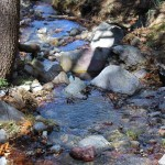 Stones, Creek, Bog & Kent Springs Hiking Trail Loop, Madera Canyon, Santa Rita Mountains,, Tucson, Arizona, Tucson Area
