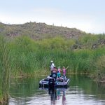 Family, Fisherman, Boat, Cove, Reeds, Saguaro Lake, Arizona, Butcher Jones Hiking Trail. Moderate Hikes. Phoenix Area Hikes. Family Friendly Hikes. Pet Friendly Hikes.