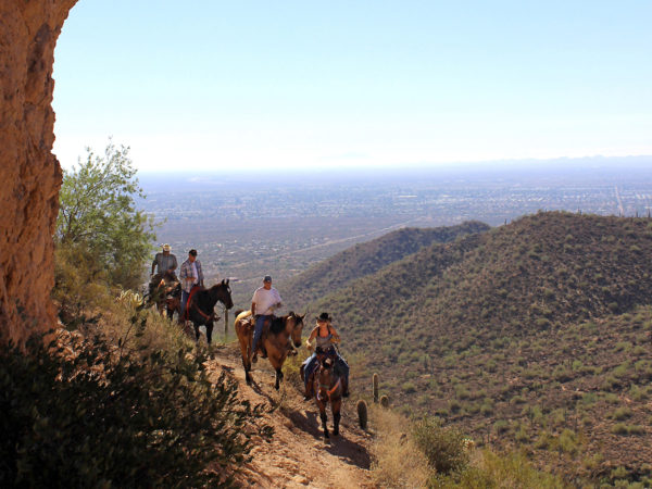 A landscape view of horseback riders on the Pass Hiking Trail, in Usery Park with the mountains and Mesa, Arizona in the background. Phoenix area hiking trails. Moderate hiking trails. Copyright azutopia.com. No use without permission.