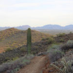 A landscape view of the Ridgeback Hiking Trail leading to the Overton Hiking Trail. In North Phoenix's Sonoran Desert Preserve. Phoenix area hiking trails. Moderate Arizona Hiking trails. Dog friendly hiking trails. Copyright azutopia.com. No use without permission.