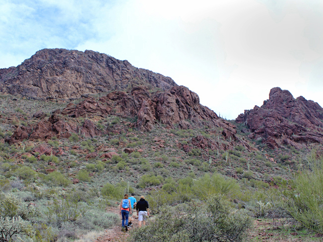Hikers on the middle portion of the Vulture Peak Hiking Trail, in Wickenburg, Arizona, northwest of Phoenix, with the craggy, cliffs on the saddle of Vulture Peak in front, Moderate Hiking Trails, Central Arizona Hiking Trails. Copyright AZUtopia. No use without permission.