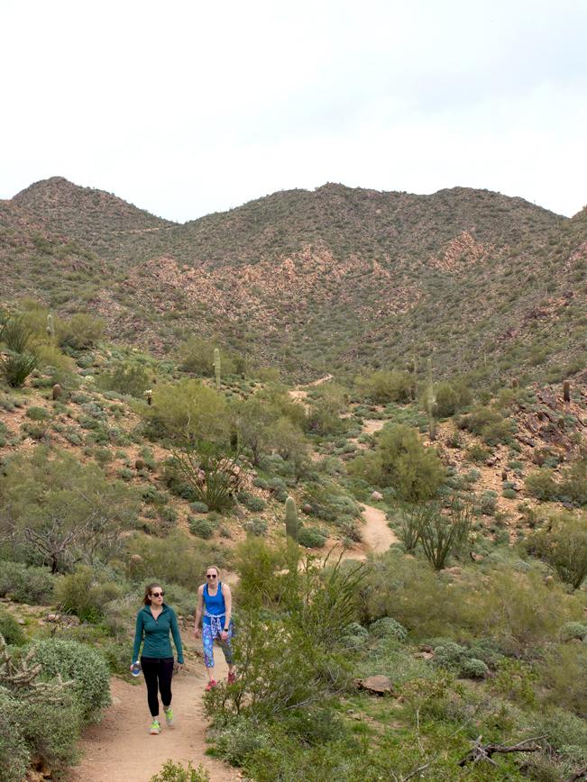 Hikers; Hiking; Sunrise Mountain; Sunrise Peak; McDowell Mountains; McDowell Mountain Preserve; Scottsdale; Arizona; Desert; Views; Sunrise Hiking Trail; Copyright AZutopia