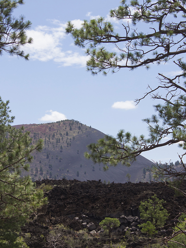 OLeary Lookout Hiking Trail; Flagstaff; Arizona; Moderate Hiking Trails; Lava Field; Views; Sunset Crater; Dog Friendly Hiking Trails. Copyright azutopia.com. No use without permission.