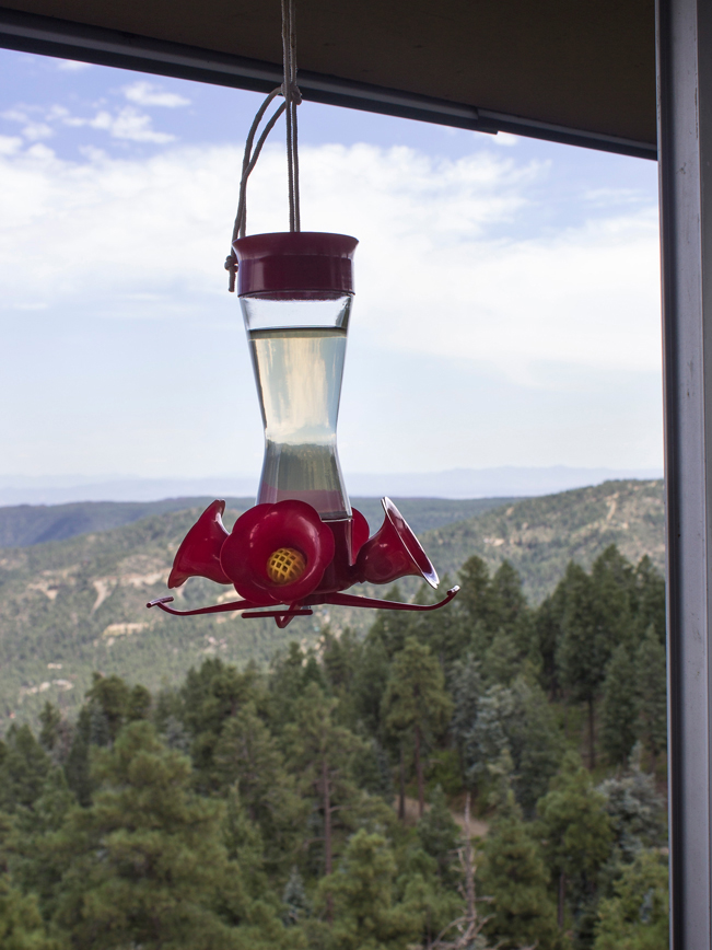 Hummingbird feeder hanging outside the watchtower at the top of Groom Creek Hiking Trail; Prescott; Arizona; with Union Mountain in the background; Prescott National Forest; Spruce Mountain; Moderate Hiking Trails; Pet Friendly Hiking Trails. Copyright azutopia.com. No use without permission.