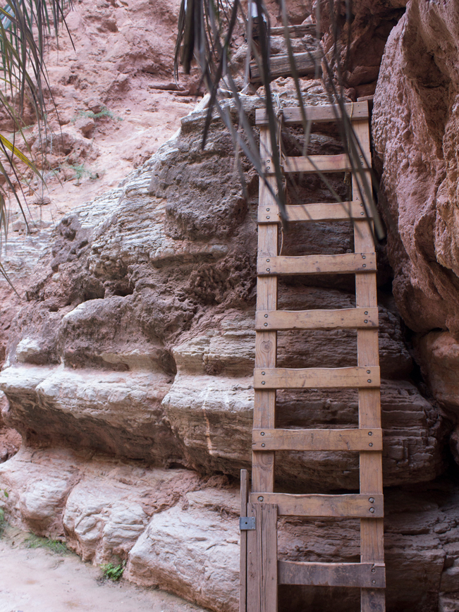 Havasu Hiking Trail; Havasupai Reservation; Havasu Canyon; Grand Canyon; Supai; Wooden Ladder; Palm Tree; Climb; Havasu Creek; Difficult Hiking Trails; Northern Arizona Hiking Trails; Copyright azutopia.com. No use without permission.
