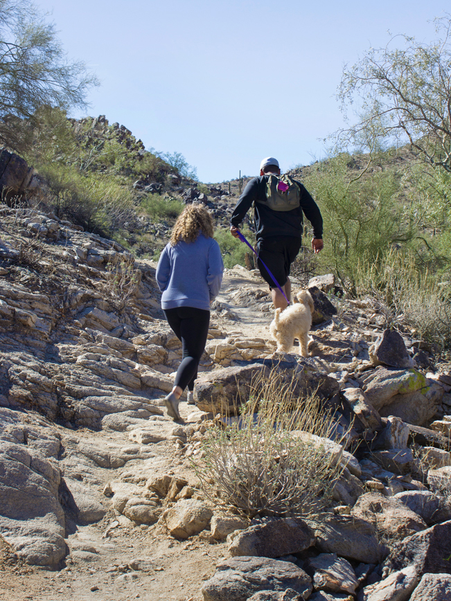 Hikers; Dog; Valley; Kiwanis Hiking Trail; Phoenix Area Hikes; Easy Hikes; Dog Friendly Hikes; Central Arizona Hikes; South Mountain Preserve; Copyright azutopia.com. No use without written permission.