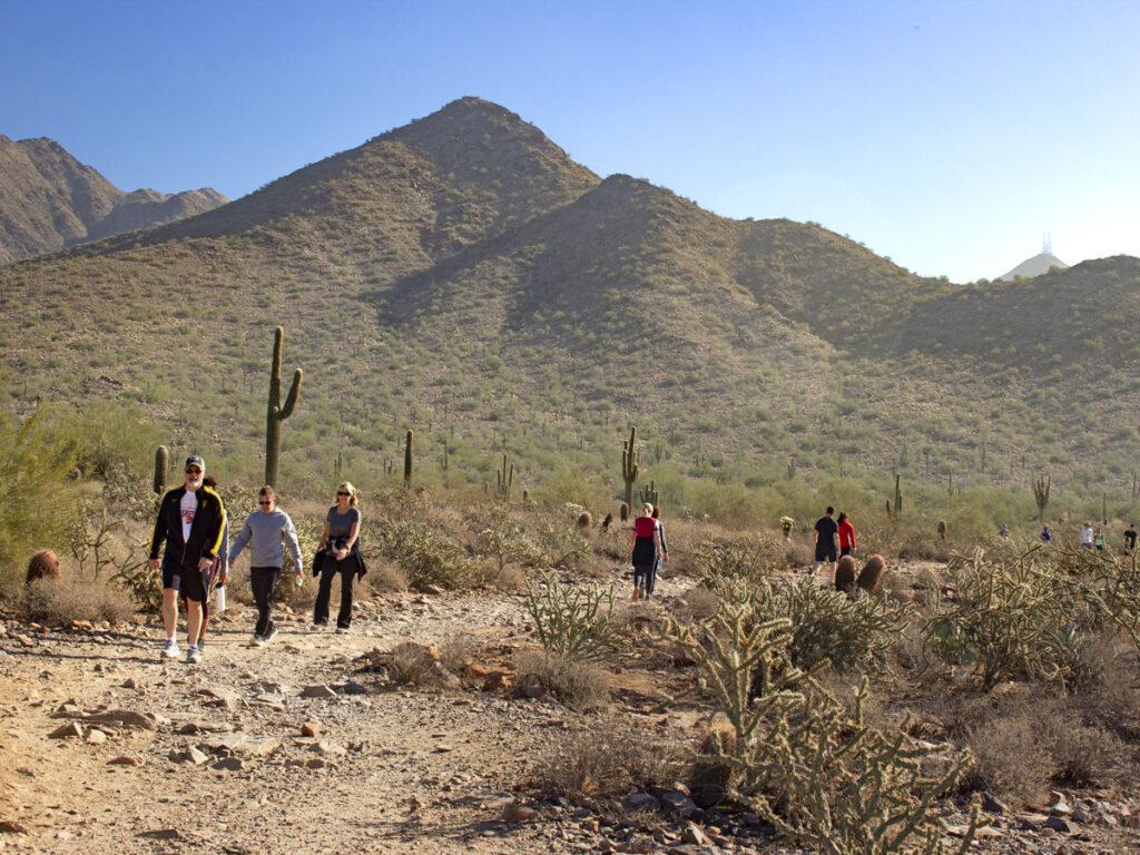 Hikers, Gateway Hiking Trail Loop, West side, Start, Saguaro Hiking Trail, Arizona, Scottsdale, Phoenix Area Hiking Trail, Moderate Hiking Trail, Dog Friendly Hiking Trail, McDowell Mountains, Thompson Peak in distance, Saguaros, Copyright azutopia.com, No use without permission