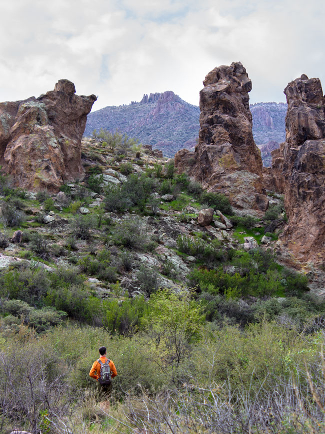 Landscape view, Hiker, Hoodoos, Tall scrub and Palo Verdes, Red Rock Escarpments in Background, Superstition Mountains, Black Mesa Hiking Trail Loop, Grand Enchantment Hiking Trail, Second Water Hiking Trail, Apache Junction, Arizona, Copyright azutopia.com, No use without permission